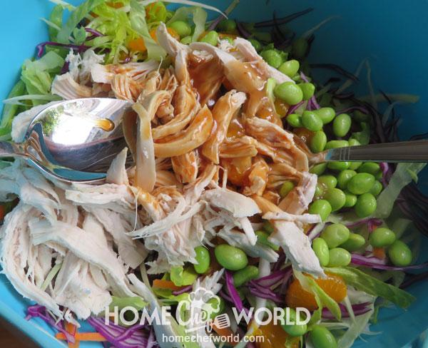 Dressing Asian Chicken Salad